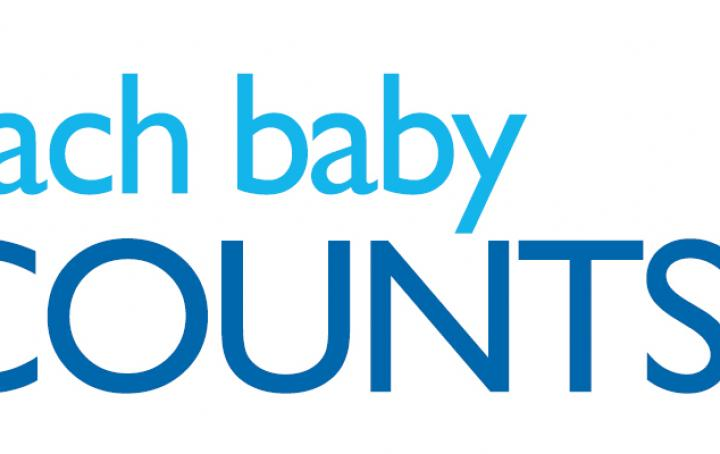 each baby counts, sands, rcog, 2017
